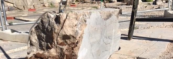 Il blocco di roccia che contiene il cranio del dinosauro Bruno
