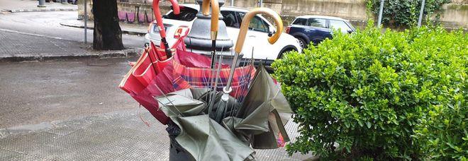 """Tra le vittime del vento anche gli ombrelli: una vera e propria """"strage"""". Cestini dei rifiuti stracolmi"""