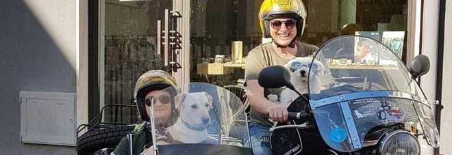 Due donne, due cani, una moto e un sidecar: il viaggio per dire no all'abbandono degli animali