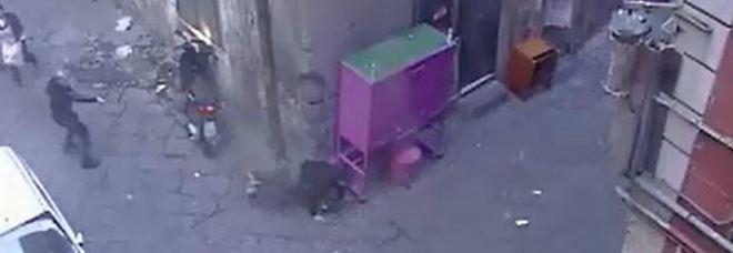 Orrore a Napoli, ecco il video choc: così il killer uccide davanti a tutti
