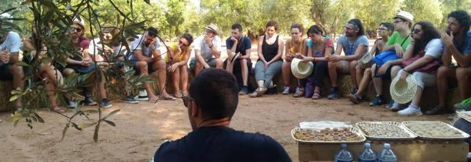All'ex Fadda di San Vito l'innovazione sociale come arte maieutica