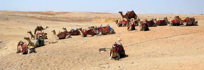 Sabbia del Bahrain pagata milioni di euro, ma con assegni scoperti: preso truffatore internazionale