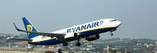 Uccello si schianta contro l'aereo, atterraggio d'emergenza per il volo tra la Germania e Bari