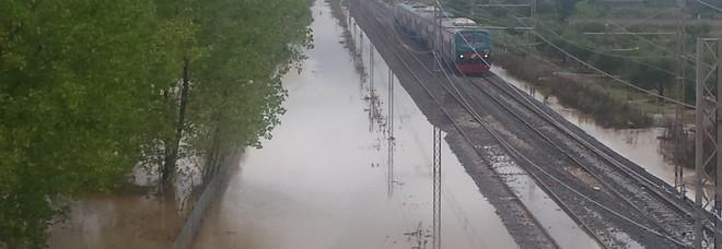 Pioggia, grandine e trombe d'aria: gravi danni all'agricoltura. L'allarme di Coldiretti