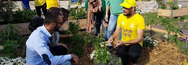 Sei italiani su 10 contadini per hobby con la zappa in giardino