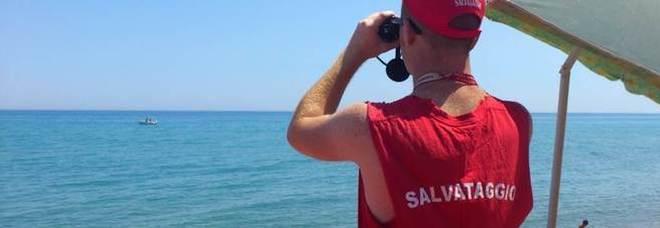 Libera dieci meduse in acqua, bagnino preso a badilate in spiaggia a Rimini