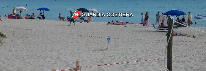 Ombrelloni sulle dune: sequestro e denuncia al lido
