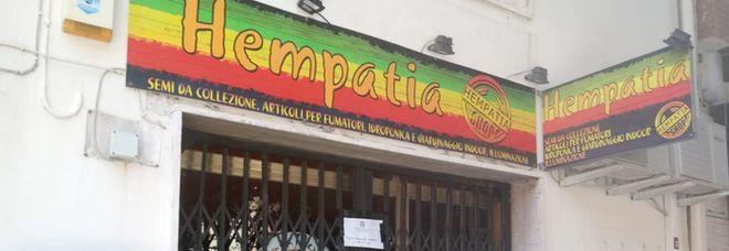 L'ex boss: «Compro qui i semi per la marijuana» Sequestrato negozio di cannabis light