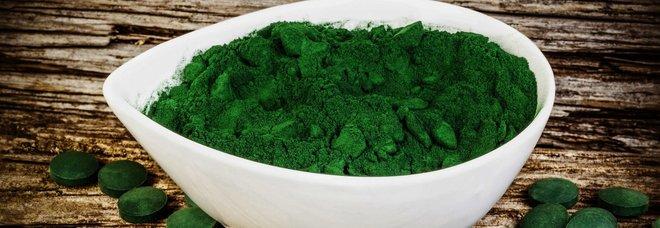 Spirulina, via alla produzione del superfood in Sardegna. «È l'alimento del futuro»