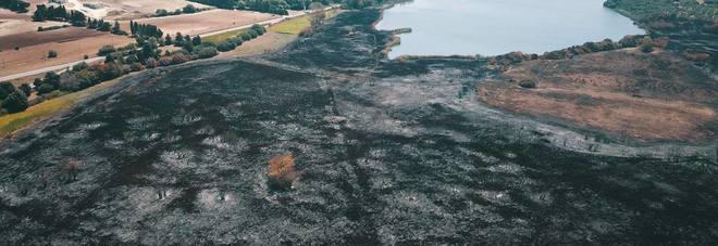 La devastazione dell'incendio ai laghi Alimini