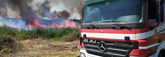 L'incendio nella riserva di Torre Guaceto